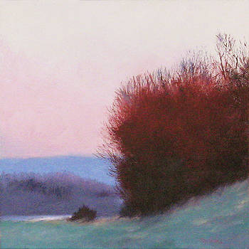 Shenandoah Sunrise by Sheila Psaledas