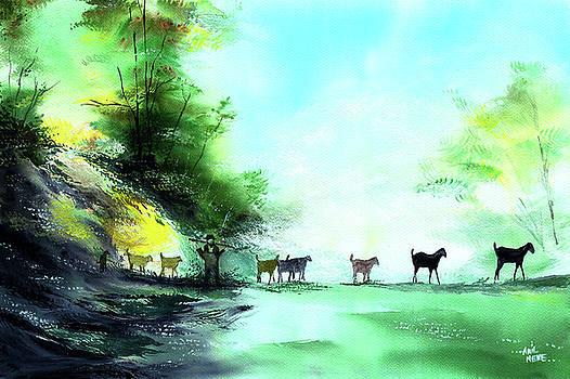 Shepherd by Anil Nene