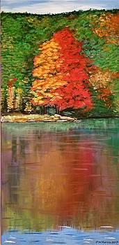 Jim Harris - Sherando Lake Reflection