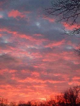 Sherbert Sky by Sandra McClure
