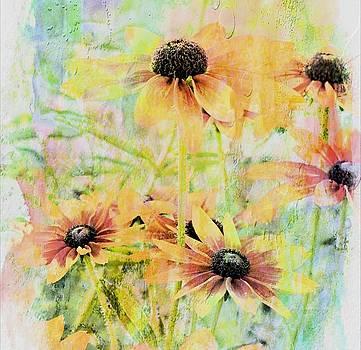 Sherbet Flowers by Virginia Folkman