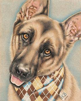 Sherman the German Shepherd by Karrie J Butler