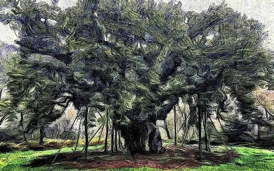 Sherwood Park by Romuald  Henry Wasielewski