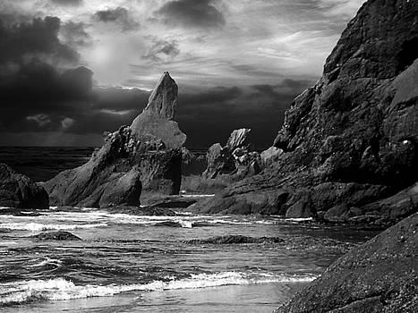 Shi Shi Beach 2 by Michaelalonzo Kominsky
