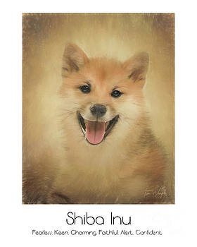 Shiba Inu Poster by Tim Wemple