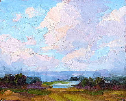 Shifting Clouds by Steven McDonald