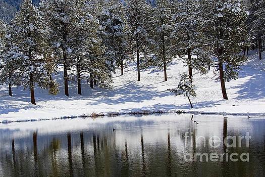 Steve Krull - Shimmering Duck Pond in Colorado Snow