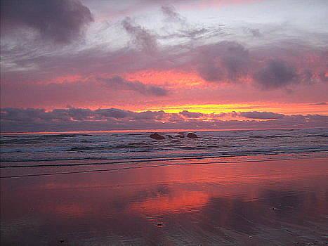 Shimmering Sunset by Antoinette Mcfadden