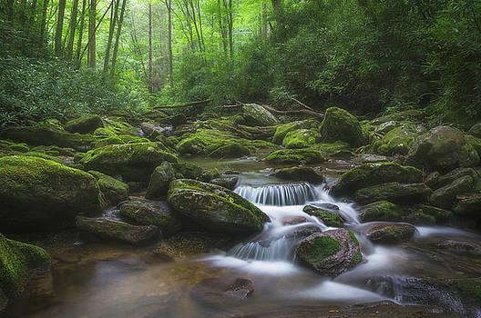 Shining Creek by Dawnfire Photography