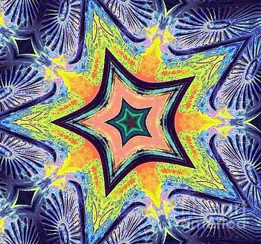Shining Star  by Dee Winslow