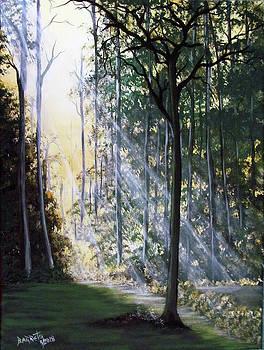Shining Through by Gloria E Barreto-Rodriguez
