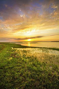 Shinnecock Bay Wetland Sunset by Robert Seifert