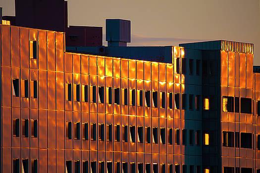 Shinny Golden Facade by Matjaz Preseren