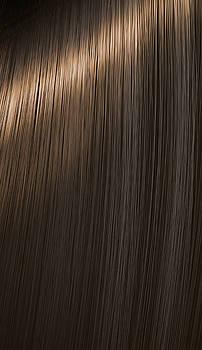Shiny Brunette Hair  by Allan Swart