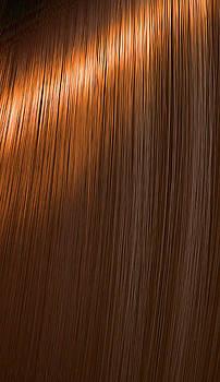 Shiny Ginger Hair  by Allan Swart