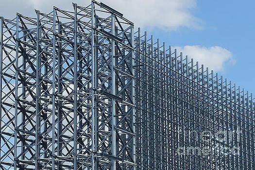 Shiny Steel Construction in Nature by Eva-Maria Di Bella