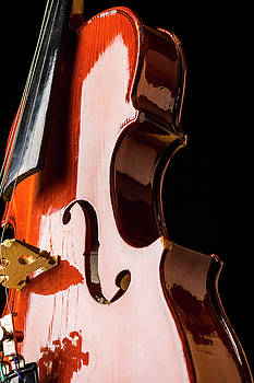 Shiny Violin by Garry Gay