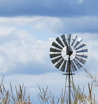 Shiny Windmill by Jeanette Oberholtzer