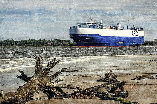 Andrew Wilson - Ship At Driftwood Beach