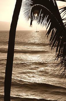 Marilyn Hunt - Ship in Sunset