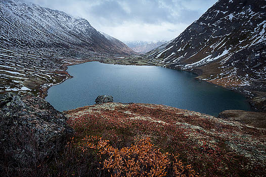 Ship Lake in Autumn Sleet by Tim Newton