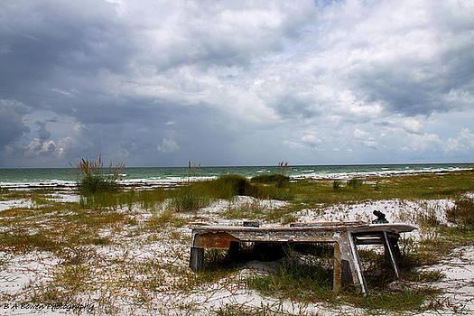 Barbara Bowen - Ship wrecked and buried