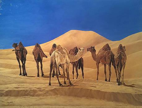 Ships of the desert by Erna Goudbeek