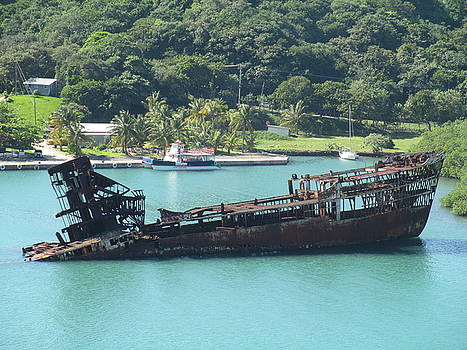 Shipwreck of Roatan 11 by Elaine Haakenson