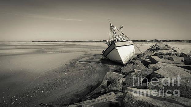Shipwreck Provincetown Breakwater Cape Cod MA by Wendy Fielding