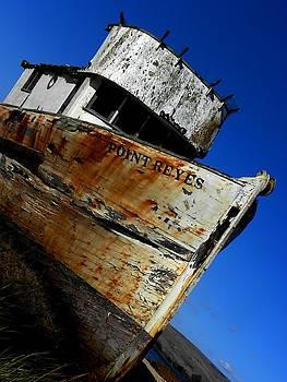 Elizabeth Hoskinson - Shipwrecked