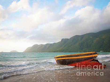 Shipwrecked in the Tropics by Felix Choo