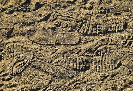 Shoe Prints by R  Allen Swezey