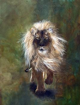 Shombay the Lion by Barbie Batson