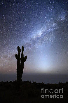Shooting Star Above Incahuasi Island Salar de Uyuni Bolivia by James Brunker