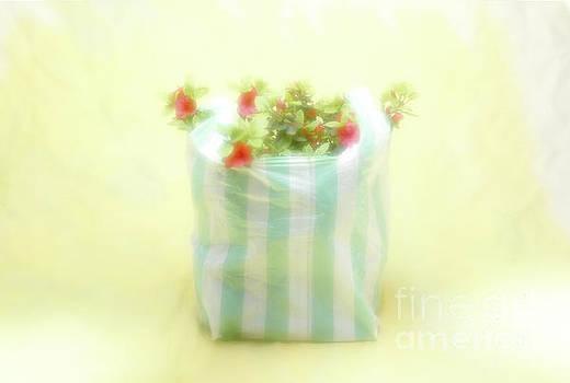 Shopping Bag by Hans Janssen