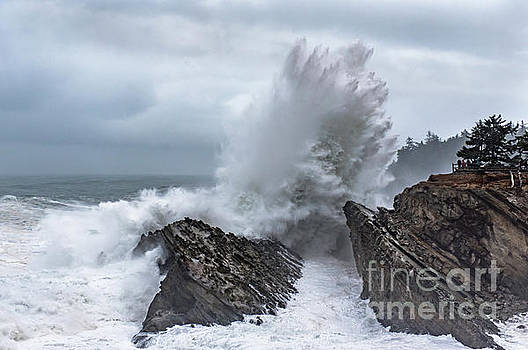 Shore Acres Storm Waves by Tim Moore