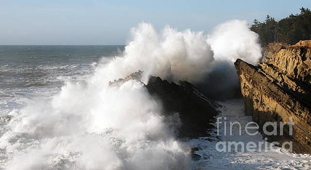 Vivian Christopher - Shore Acres Wave 2