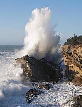 Vivian Christopher - Shore Acres Wave 5