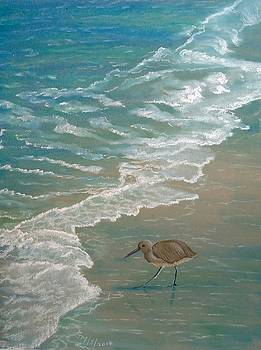 Shore bird by Joan Mansson