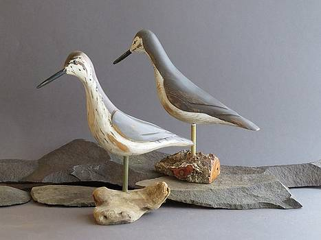 Shore Birds  by Bruce Peterson