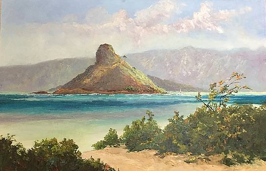 Shore Breeze Kualoa Park by Ed Furuike