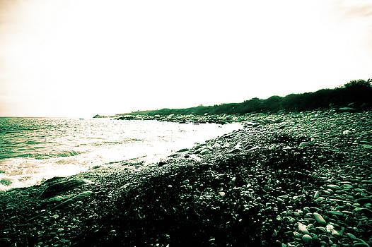 Shore  by Susan Schumann