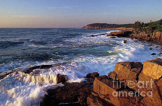 Shoreline at Acadia National Park, Maine by Kevin Shields
