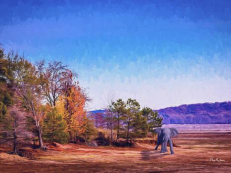 Shoreline Elephant by Barry Jones