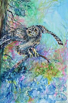 Zaira Dzhaubaeva - Short-eared Owl