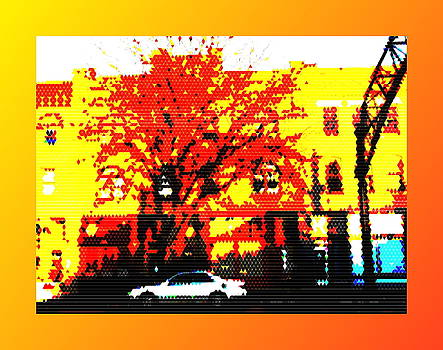 Short North Tree by Joe Ditzel