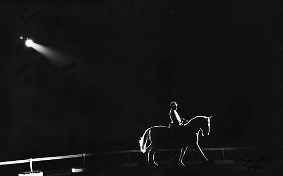 Show horse by Jim Wright