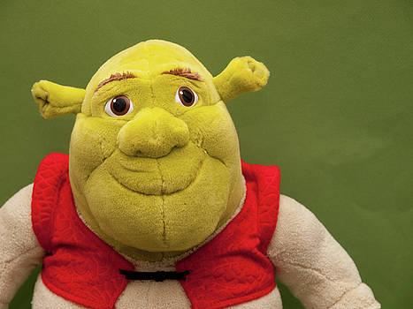 Shrek by Valerie Morrison