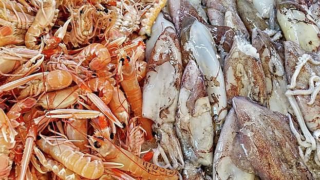 Shrimp and Squid - Port Santo Stefano, Italy by Joseph Hendrix