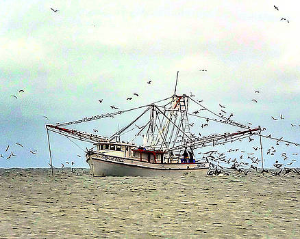 Shrimp Boat at Work 02 by Terry Shoemaker